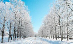 Winter: A Season for Worship & Charity