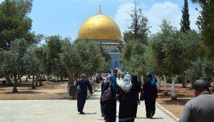 A Dream Come True: My Journey to Al-Aqsa
